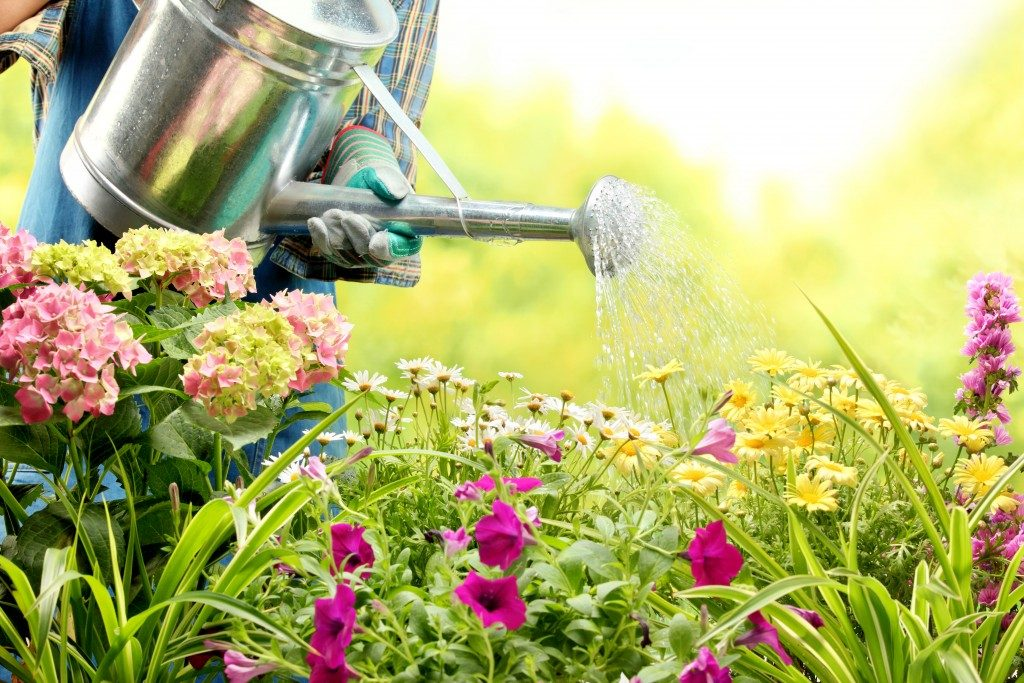 watering flowers in garden center