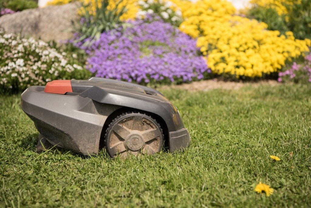 fixing the lawn