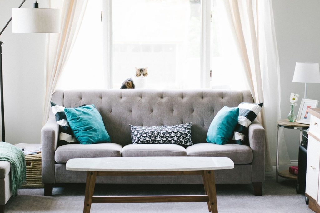 couch and light curtains